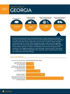 2014 Georgia Factsheet