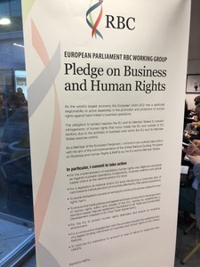 NGOs welcome MEP initiative on responsible business conduct